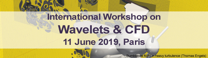 International Workshop on Wavelets & CFD - 11 June 2019