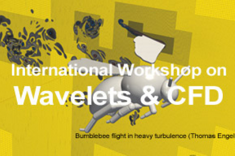International Workshop on Wavelets & CFD