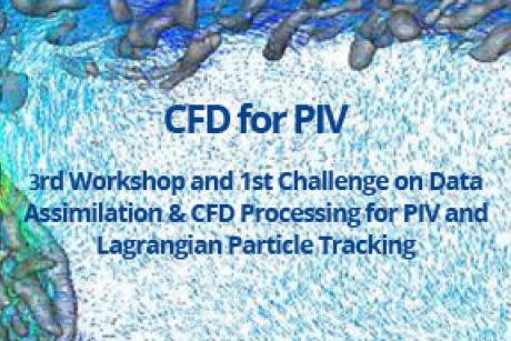 3rd Workshop and 1st Challenge on data Assimilation & CFD Processing for PIV and Lagrangian Particle Tracking